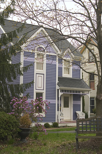house painted purple