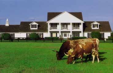 Remembering the TV series Dallas Southfork Ranch